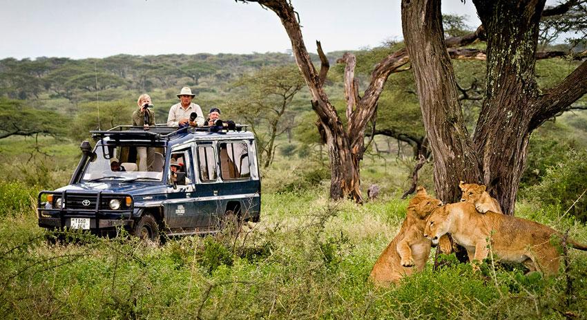 Kenya,-Tanzania,-&-Safaris